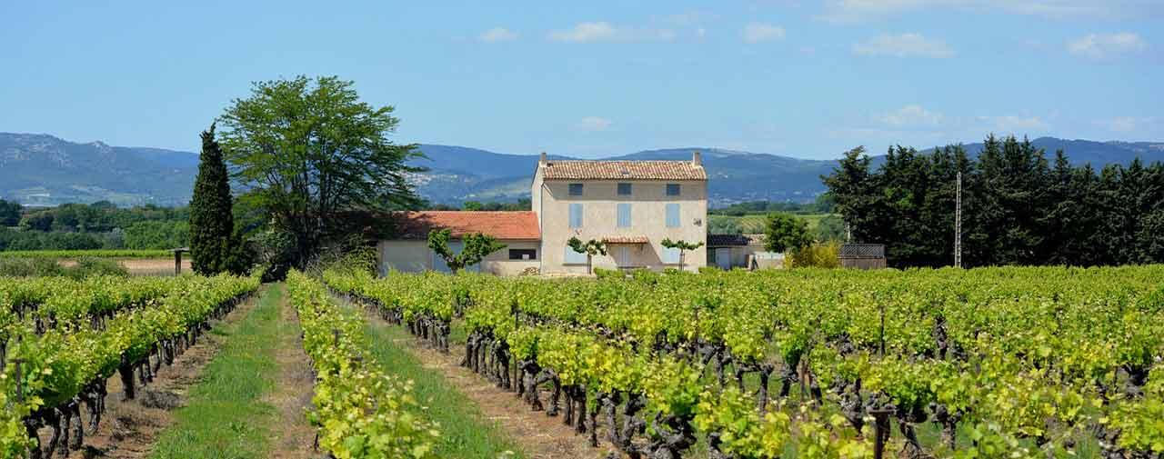 vignobles du Luberon